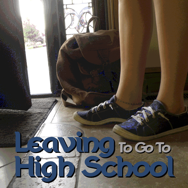 Leaving to go to High School cover image.